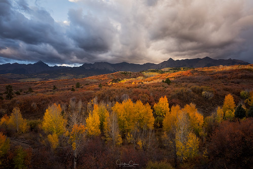 aspentrees autumn fallcolors landscape sanjuanmountains colorado spotlight dallasdivide sunrise ridgway unitedstates us