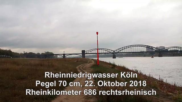 686 r Rheinniedrigwasser Köln 2018 Video