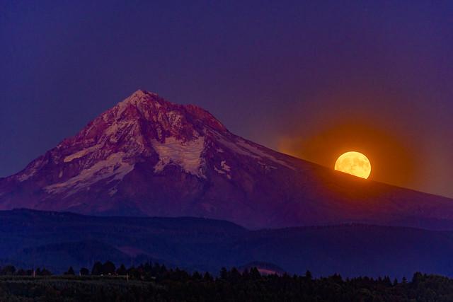Harvest Moonrise Over Mt Hood, Oregon
