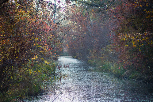 water autumn river nature ukraine travel kremenchuk