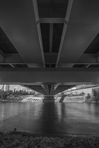 edmonton alberta canada bridge walterdalebridge northsaskatchewanriver water reflections edmontonrivervalley bw blackandwhite monochrome