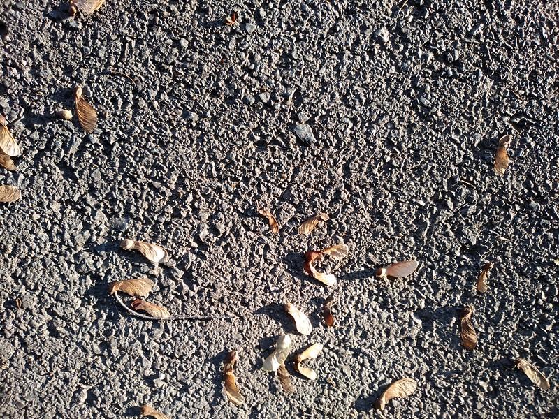 Asphalt texture #04