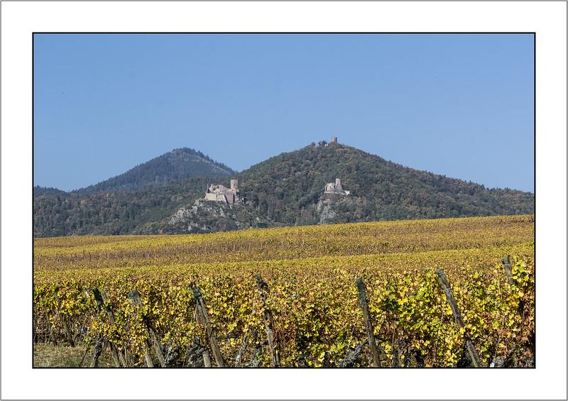 Trois châteaux au dessus des vignobles (Three castles above the vineyards)