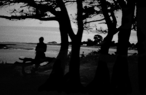 sea locmariaquer bretagne sunset crépuscule sand beach wood trees woman sitting contemplative islands france tide branches night darkness silhouette blur