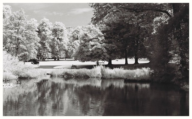 Whitworth Park in IR.