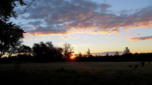 sunrise clouds whitehouse station nj sun readington trees field