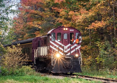 ontario stjacobs elmira train autumn fall journey trip nikon d7200