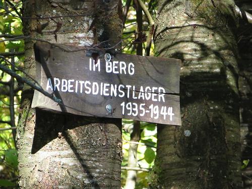 IMG_6957   by walterbusch65