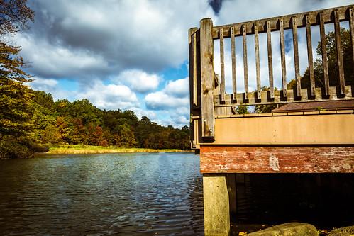 heddenpond landscape nature water outdoors randolphnj pond heddenpark morriscounty dover newjersey unitedstates us