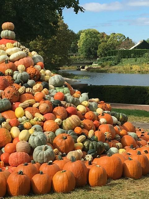 October at the Garden
