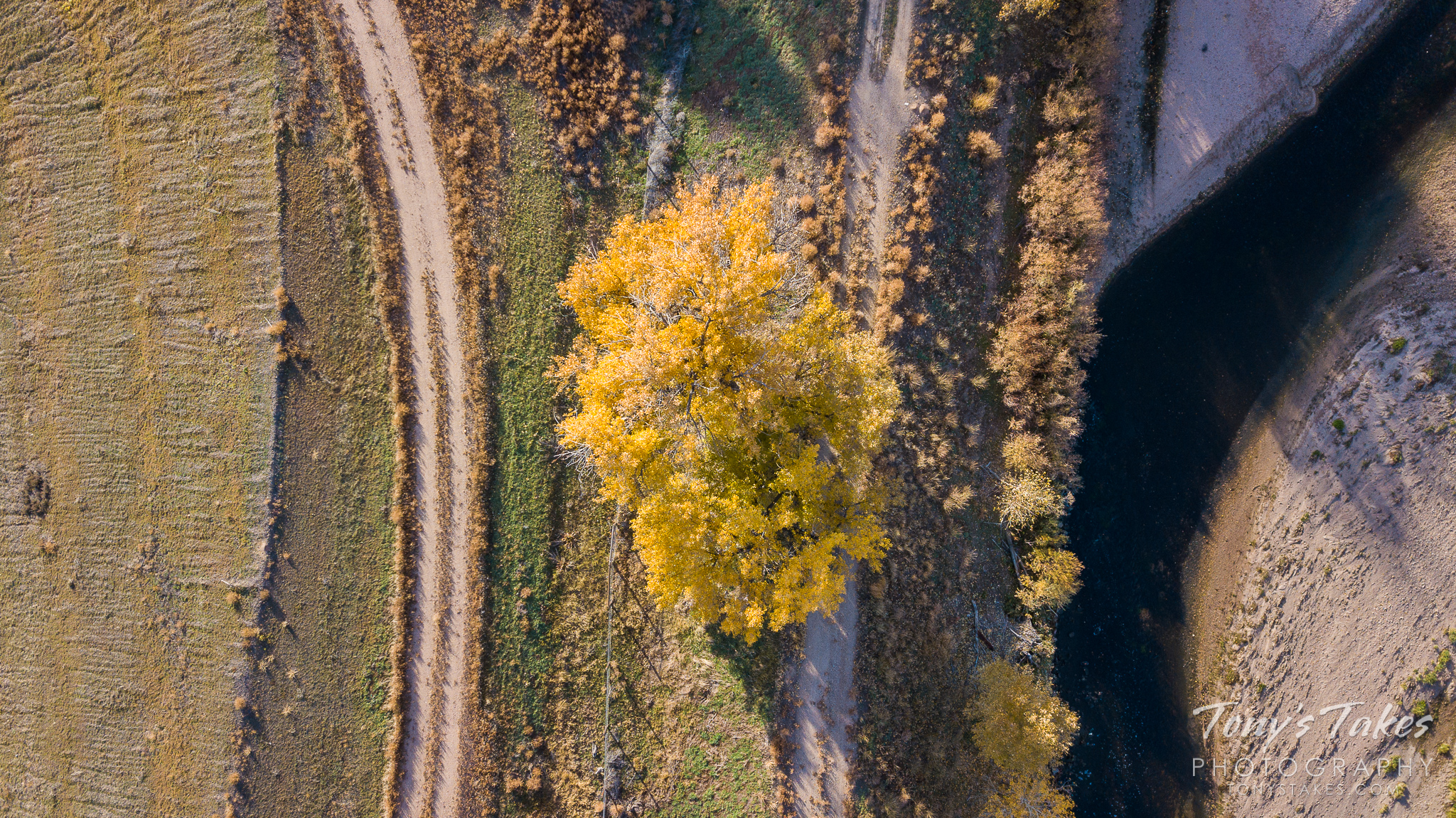 Looking down at fall colors along the South Platte River. (© Tony's Takes)