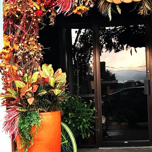 fall autumn sunrise 2018 september florist
