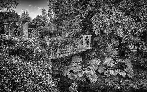 bridge birr ireland offaly