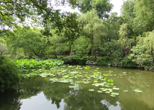Humble Administrator's Garden (Suzhou, Jiangsu)   by courthouselover