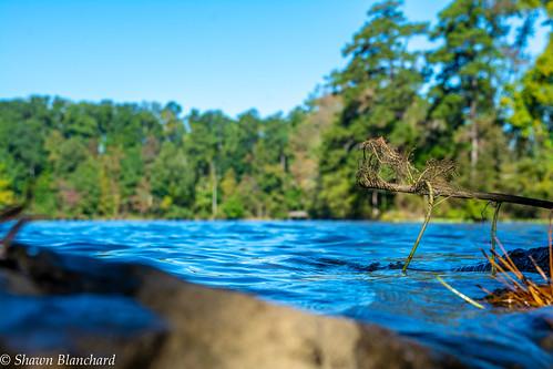 yates mill pond dam water trees sky blue green orange yellow red rocks raleigh north carolina nc travel visit perspective