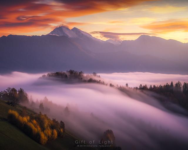 Misty Flow
