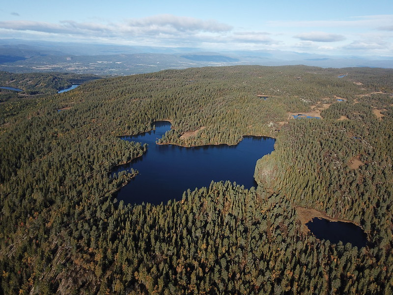 16-Flagervann (drone)