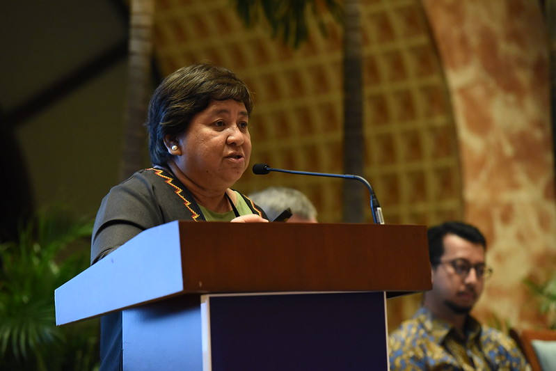 Integrating Disaster Risk Reduction and Climate Change Adaptation in Development Planning - Jessica Bercilla - National Resilience Council, Philippines