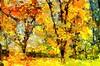 Fall Time by Kalev Vask.