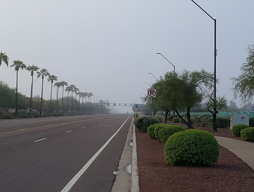 scavenger7 round91 skywatch ansh avondale fog