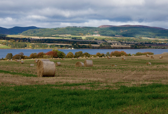 Looking-out-from-the-Black-Isle-over-the-Cromarty-Firth