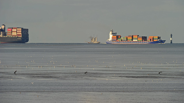 A sailing Three-Master between container giants on the river Elbe near Cuxhaven