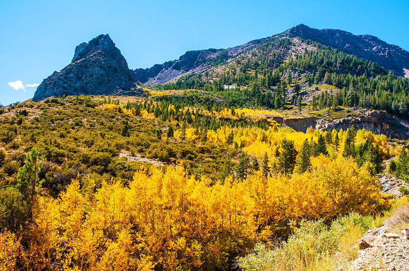 Tioga Pass Eastern Sierra Nevada
