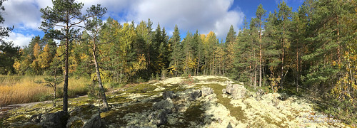 iphone taipalsaari southkarelia finland fi sky wood landscape appleiphonese apple iphonese