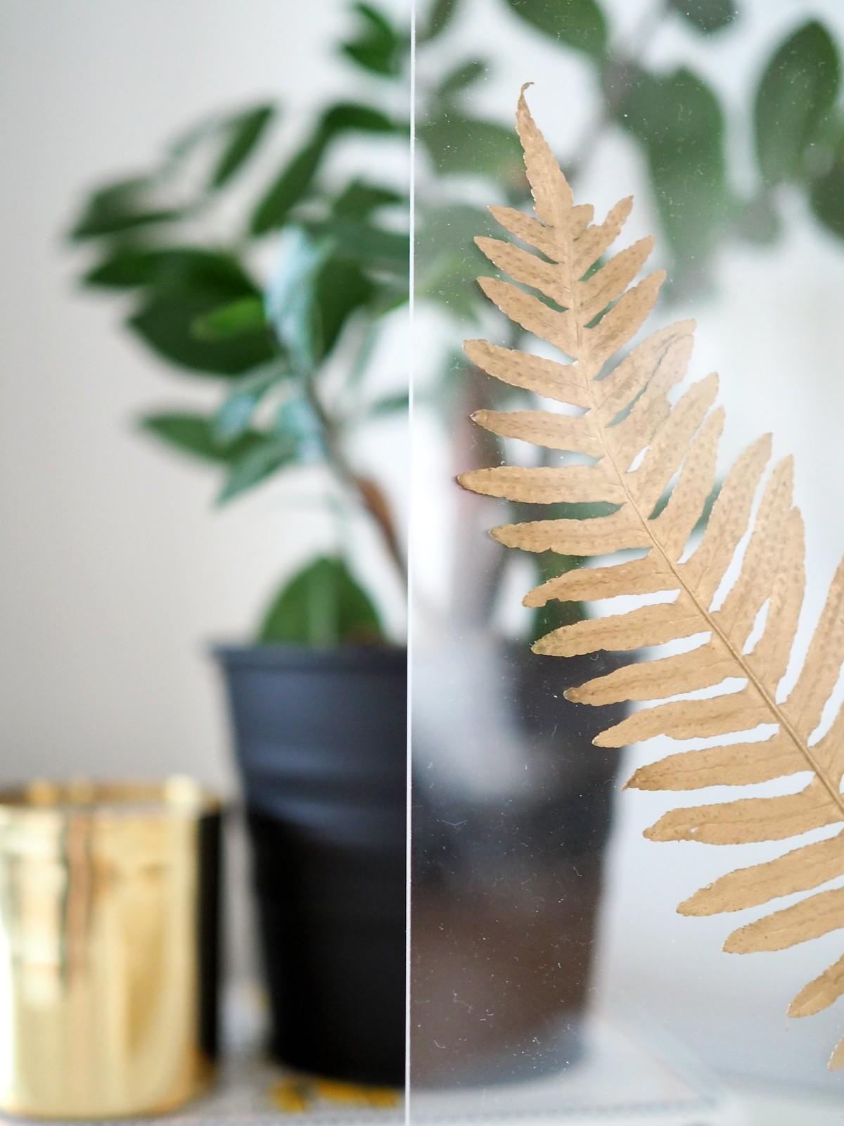 kullattu-kasvi