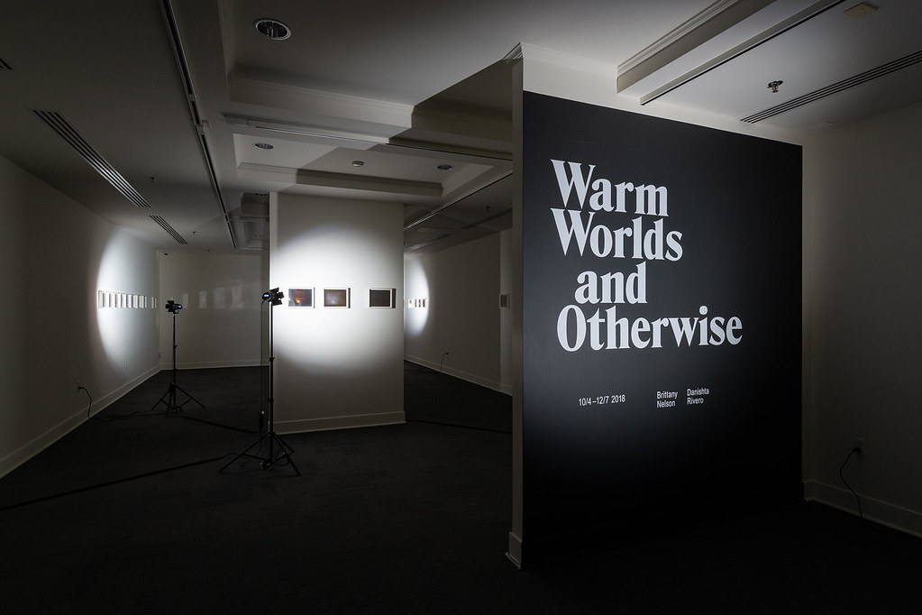 Warm Worlds and Otherwise: Brittany Nelson and Danishta Rivero; Harnett Museum of Art, University of Richmond, October 5 - December 7, 2018