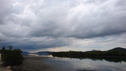 Brisbane Waters, Koolewong