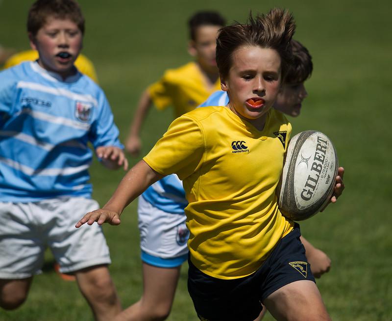 Nine Rugby Infantil URBA - M9 - Lomas AC