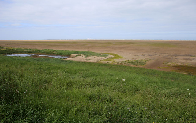 The beach at Tetney Marshes Nature Reserve