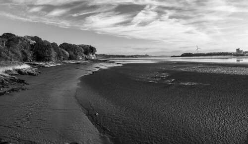 blackwhite bnw blackandwhite riversevern sky shadows outdoors places photographers lovebw landscape light monochrome nature dawn shore