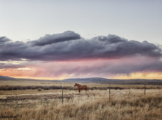 Sunset approaches at the Big Creek cattle ranch, a huge spread just above the Colorado line near Riverside in Carbon County, Wyoming. Original image from Carol M. Highsmith's America, Library of Congress collection. Digitally enhanced by rawpixel.
