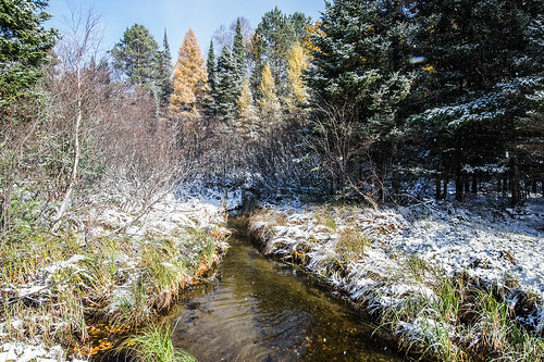 snow stream winter water eagleriverwisconsin eagleriver wisconsin creek landscape woods forest