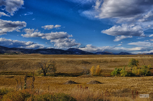 Colorado Mountains with Foliage -Longmont-6144rw