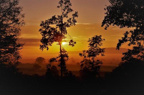 sunrise mist light roof farm sun shine trees silhouette shropshire upton magna haughmond hill