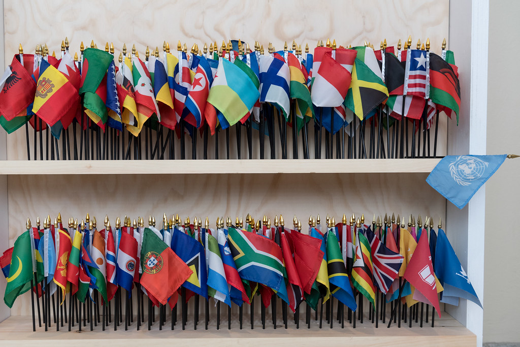 United Nations and Member State Flags at VIP Social Media