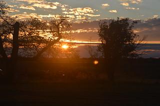 DSC_0805 | by Lawrence Trail Hawks