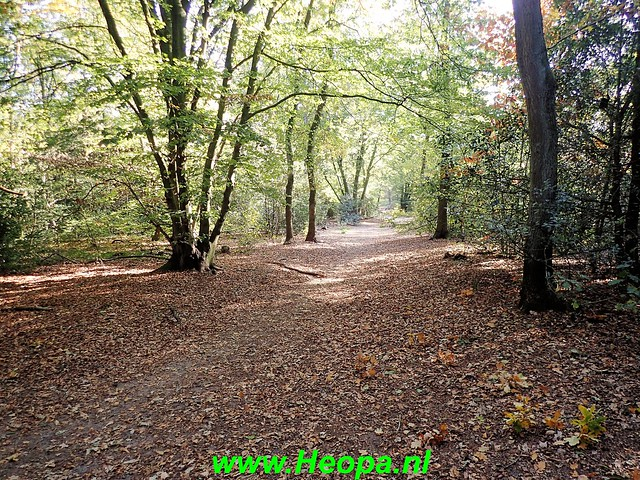 2018-10-10 Amersfoort-zuid     Natuurtocht        24 Km   (218)