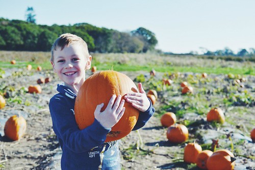Best pumpkin picker | by My Two Mums
