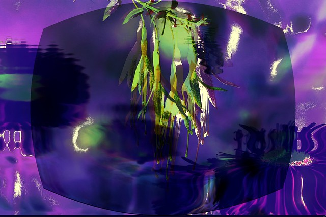 Psychedelic and Nature, night