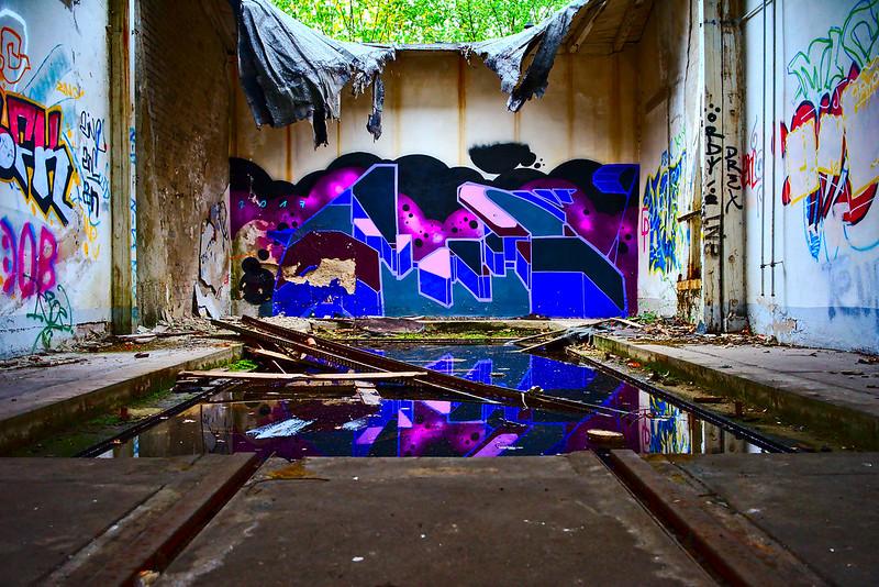 Violette Reflektion