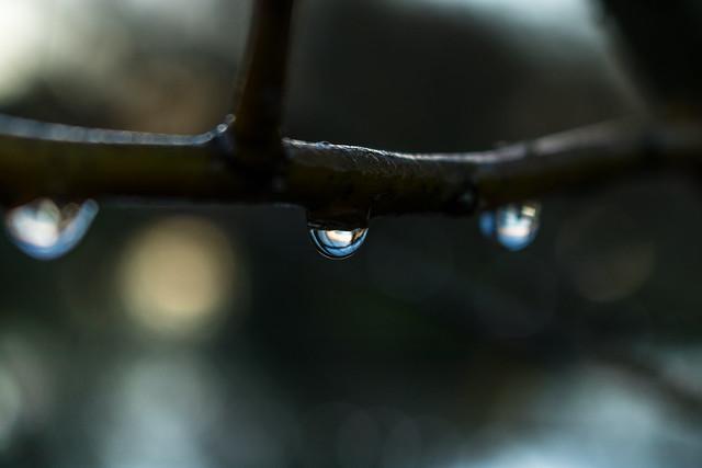 Rain Drops with bokeh lake background
