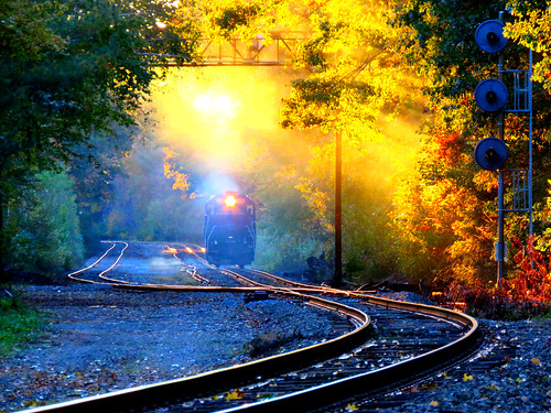 sunset fall tree train locomotive railroad signal track