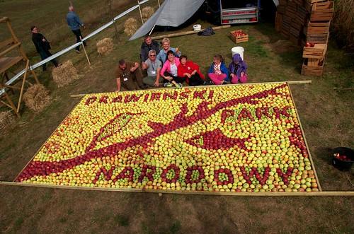 polska poland polen polonia gambezia pentax k30 drawieński park narodowy dpn święto jabłka drawnik apples apple mozaika mosaic drawa national