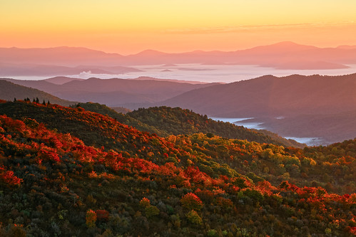 sunrise autumn fall color watercolor