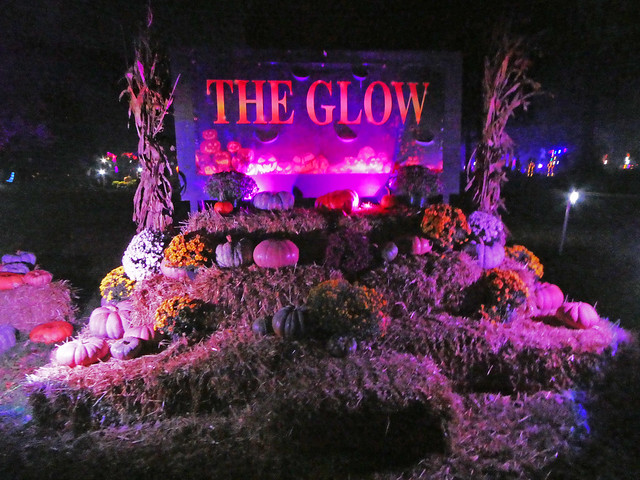 The Glow Jack O'Lantern Experience 2018 - Reston, VA (2)