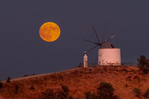 moon fullmoon moonrise lua luacheio silves windmill sunset